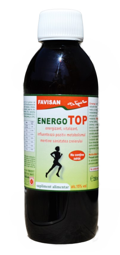 Energo TOP