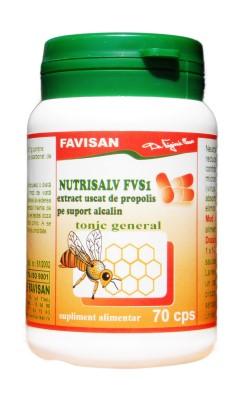 Nutrisalv FVS1 - tonic general