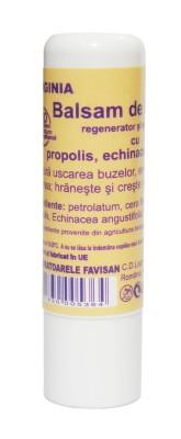 Virginia - balsam de buze cu propolis